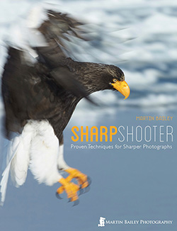 Sharp Shooter eBook