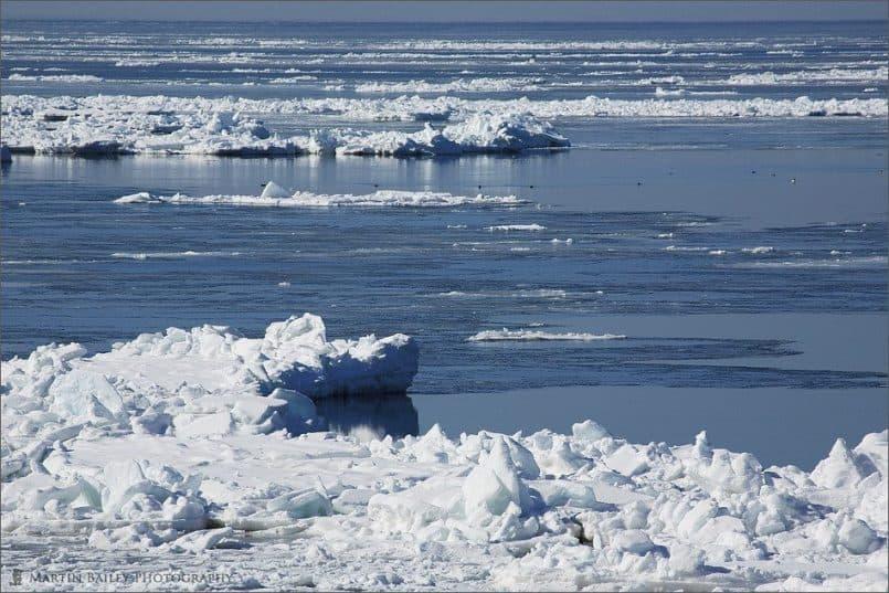 Drift Ice