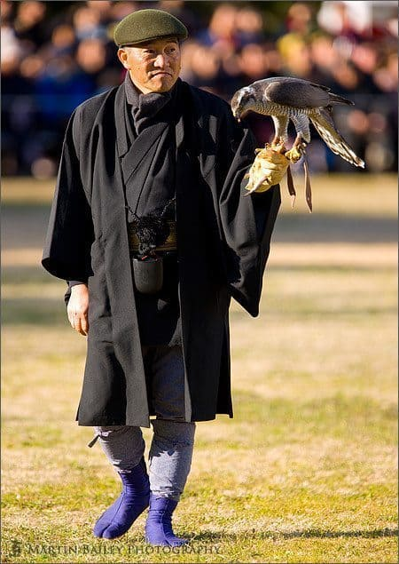 Japanese Falconer