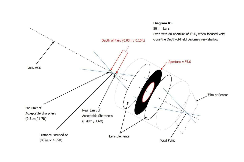 DOF Diagram #5