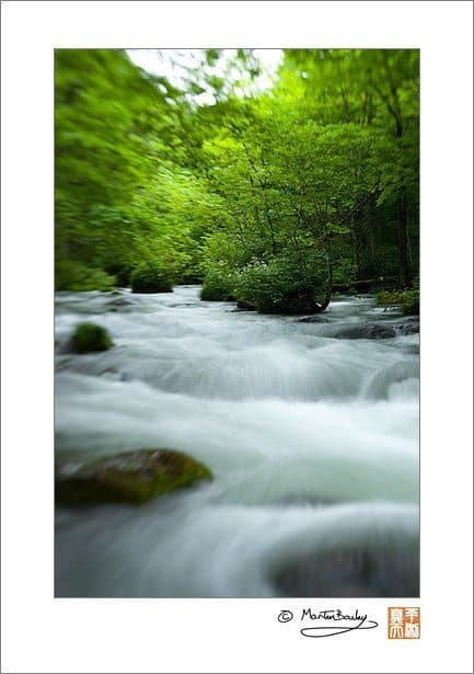 Oirase Mountain Stream (Lensbaby @ F11)