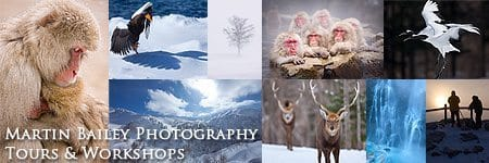 Visit the Martin Bailey Photography Workshops and Photography Tour Web Site