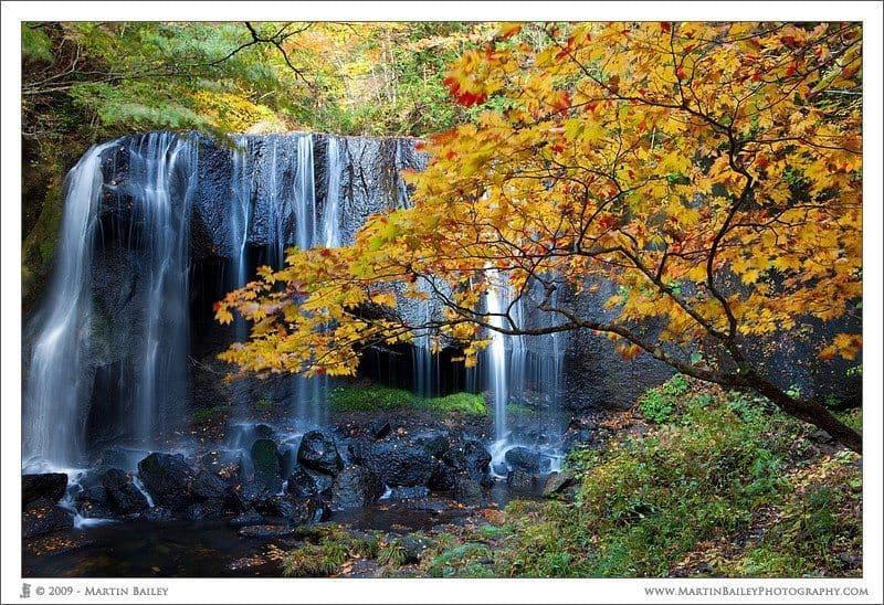 Tatsuzawa Fudoudaki with Kaede Autumn Leaves