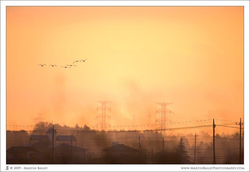 Pylon Sunrise - Looking Ahead