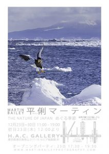 """THE NATURE OF JAPAN"" 個展ポスター"