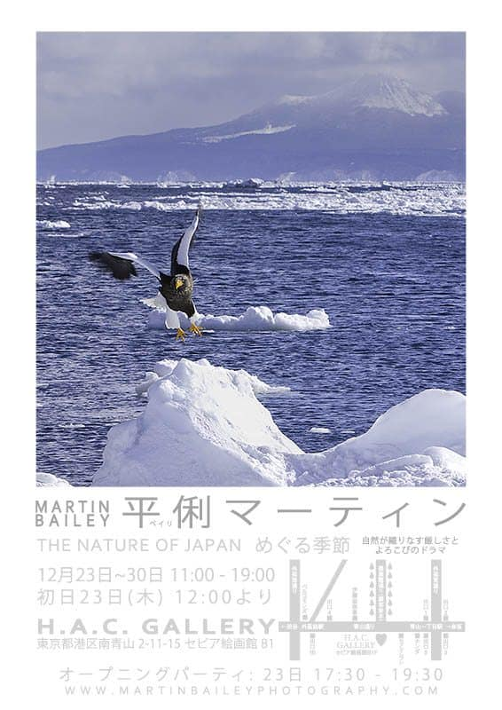 """THE NATURE OF JAPAN"" 個展ポスター"