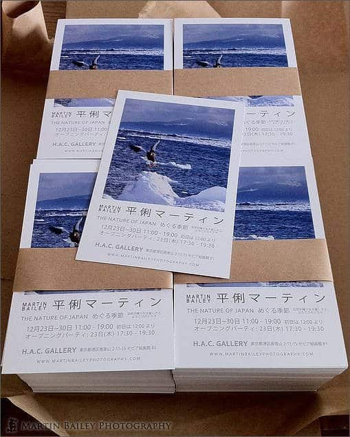 1,000 Post Cards for MBP Exhibition