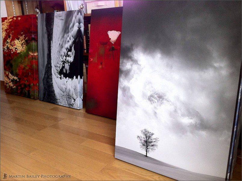 Four of Ten Gallery Wraps
