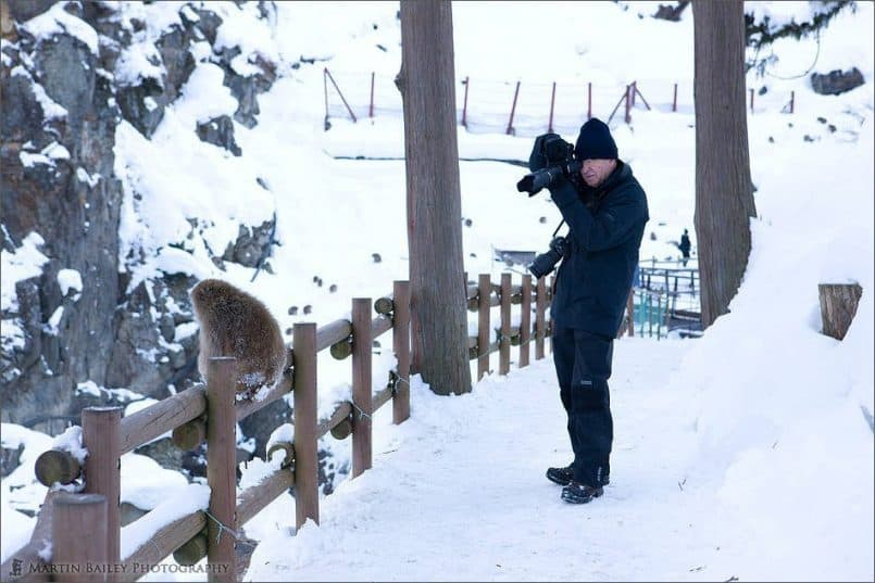 Richard Photographing a Snow Monkey