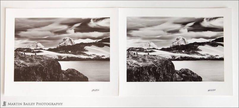 Antarctica - Gentoo Point Examples