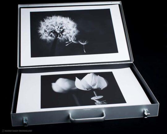 MBP Portfolio Case with Flower Shots