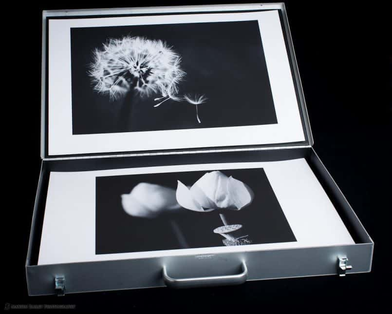 MBP Portfolio Case with Flower Shots