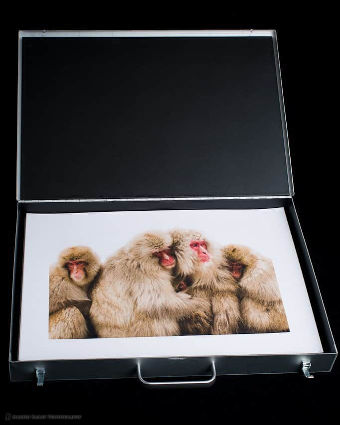 MBP Portfolio Case with Leading Photo