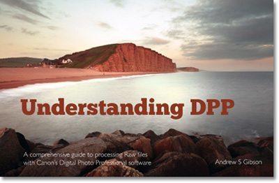 Understanding DPP