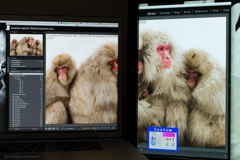 Dual Monitors in Perfect Harmony