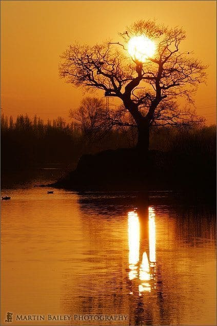 545_Attenborough_Nature_Reserve_Sunset_3579