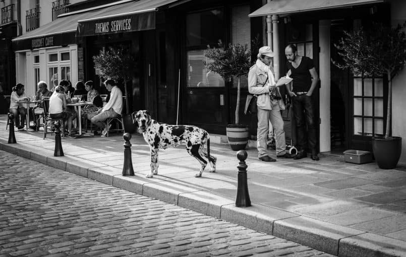 Valerie Jardin ~ Street Photography-2
