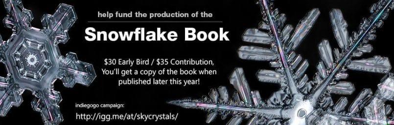 snowflakebook1