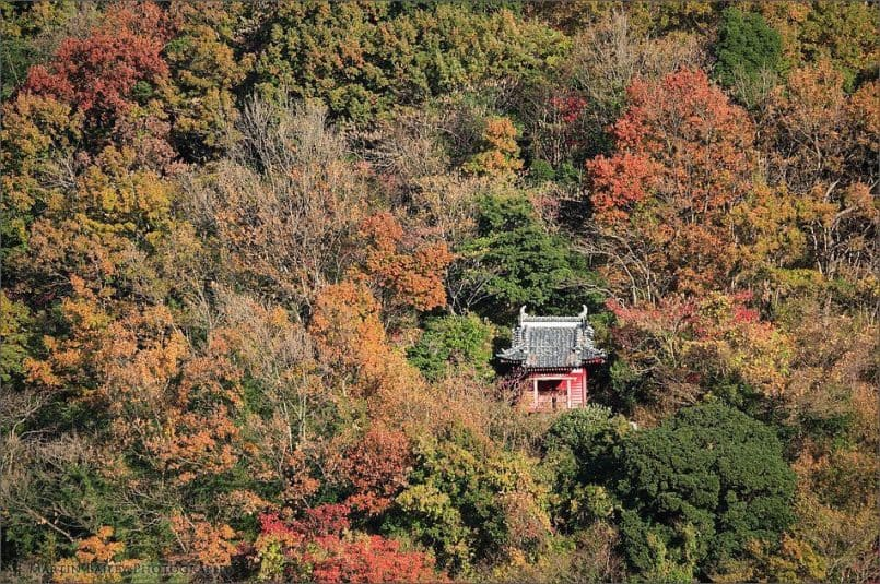 Small Shrine in Autumn Leaves