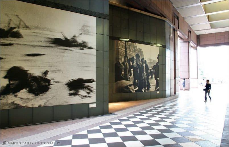 Photo Musuem Wall (Love & War)