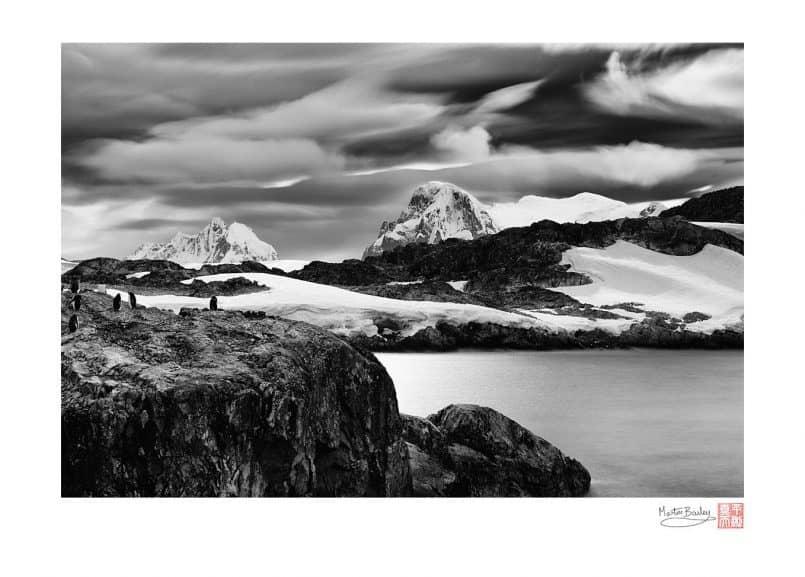 Gentoo Point - Antarctica