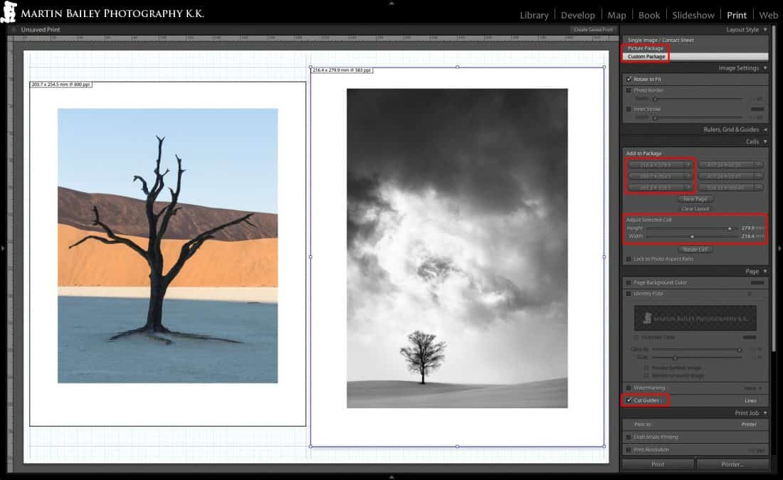 """8 x 10"""" and 8.5 x 11"""" Prints on 12 x 17"""" Media (Roll)"""