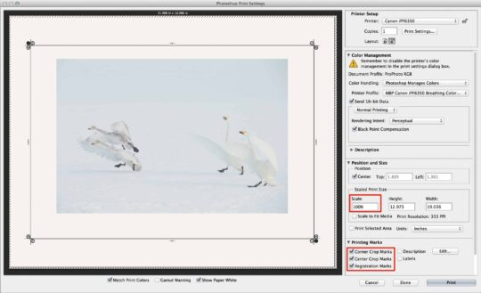 Printing With Frames From Photoshop