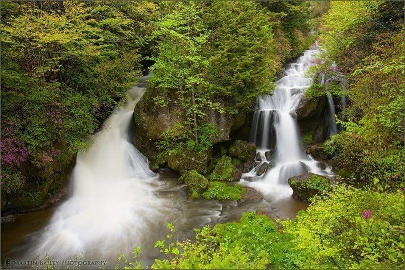 Ryuuzu Falls with Azalea