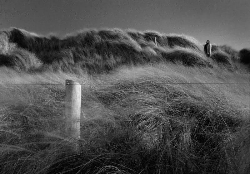 Dune-dream