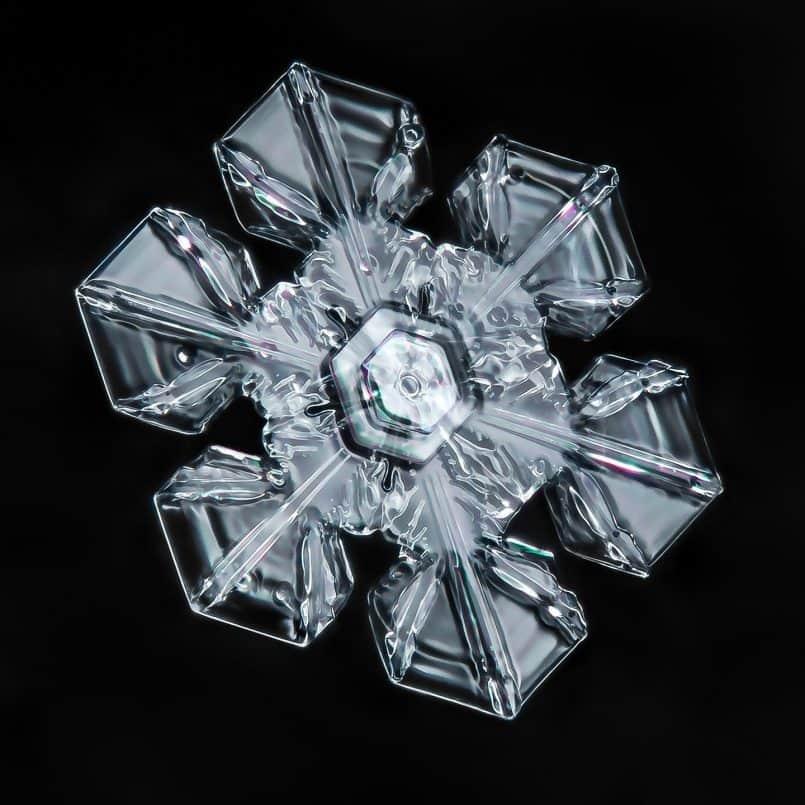 Snowflake © Don Komarechka