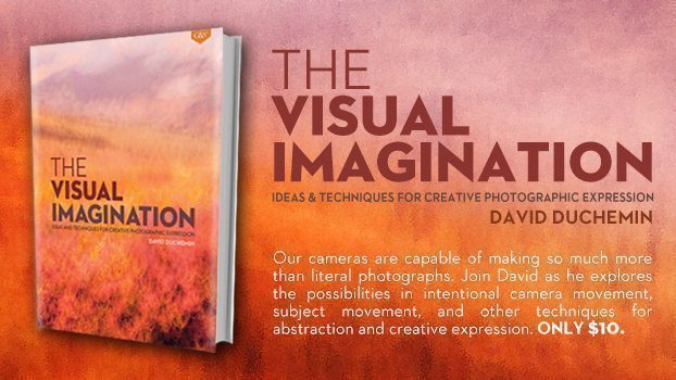 The Visual Imagination