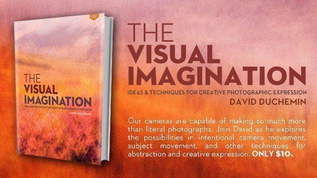 The Visual Imagination