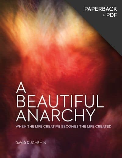 A Beautiful Anarchy - Paperback + PDF