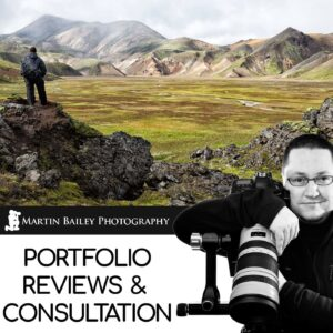 Martin Bailey Portfolio Reviews & Consultation