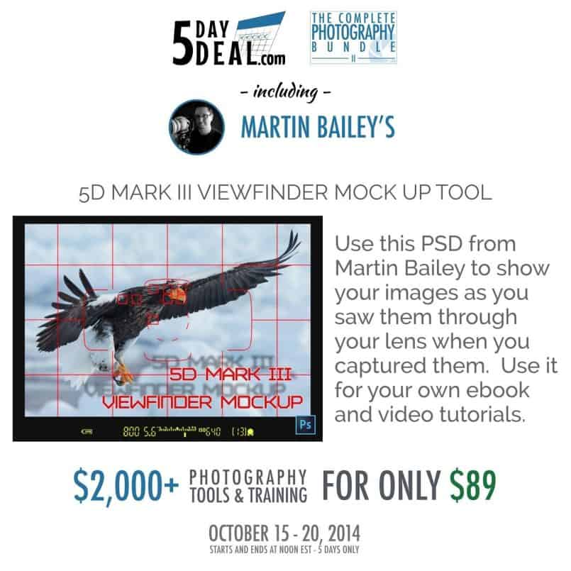 5DayDeal-Martin-Bailey-Feature