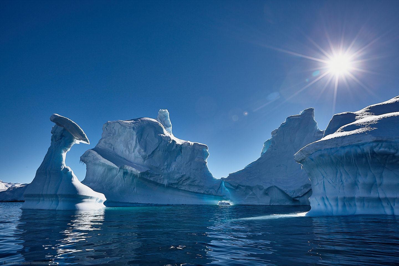 Portal Point Icebergs