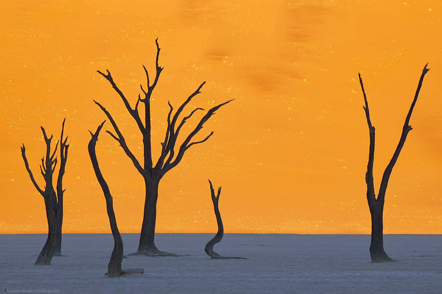 Deadvlei Silhouettes - Peace be to All