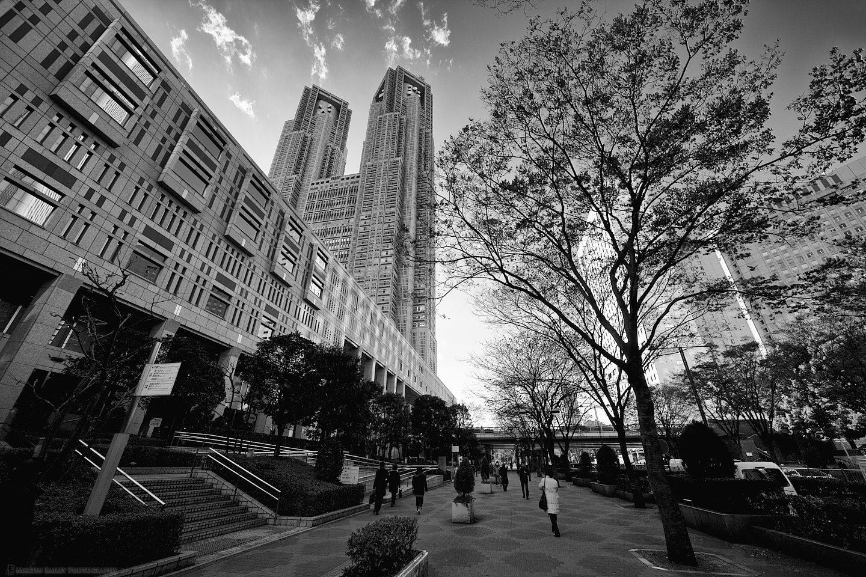 Tokyo City Hall