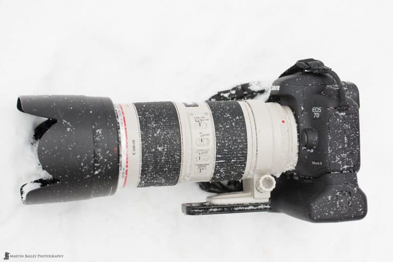 7D Mark II in Snow