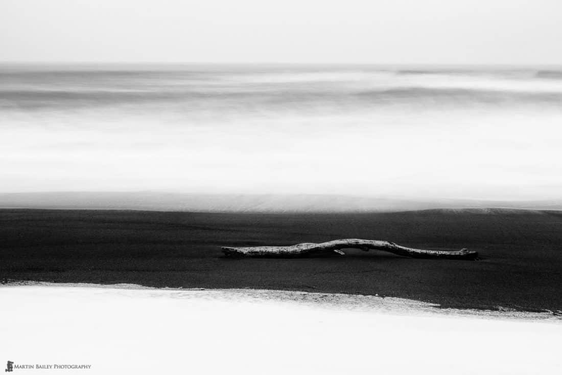 Driftwood on Snowy Beach