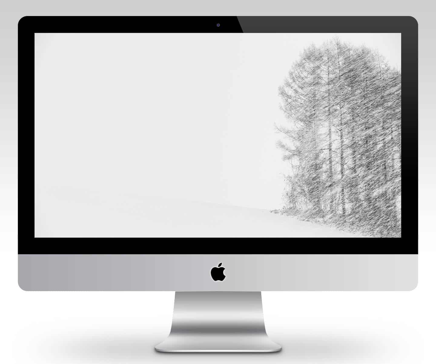 Pencil Drawing Trees Wallpaper_Mockup