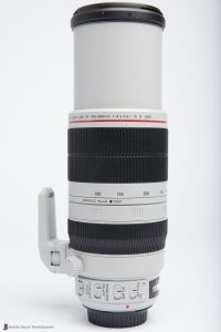 Canon EF 100-400mm f/4.5-5.6 L IS II USM Lens at 400mm
