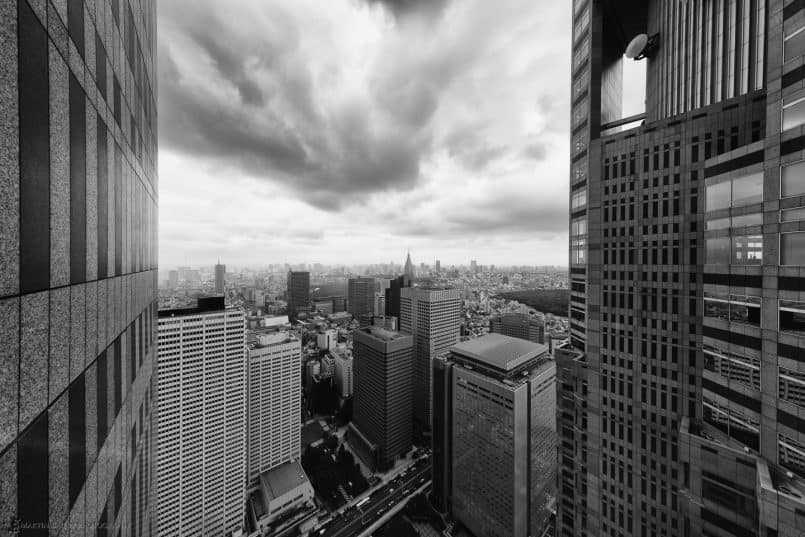 Tokyo from Metropolitan Government Building