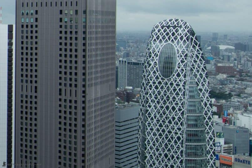 The Cocoon from Metropolitan Government Building (100% Crop)