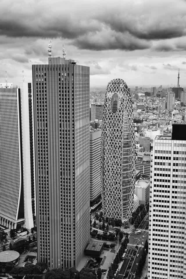 The Cocoon from Metropolitan Building (24-70mm)