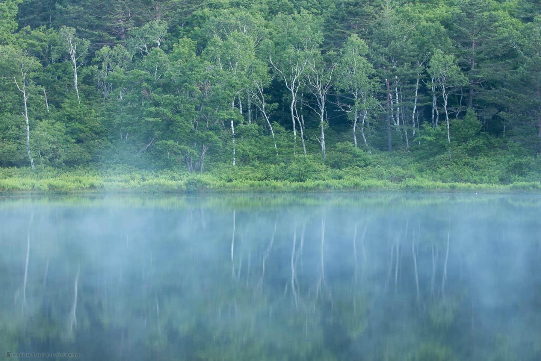 Ichinuma with Dawn Mist