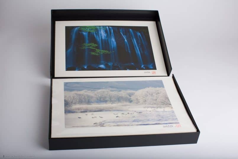 "13 x 19"" Prints in Polypropylene Sleeves and Clamshell Storage"
