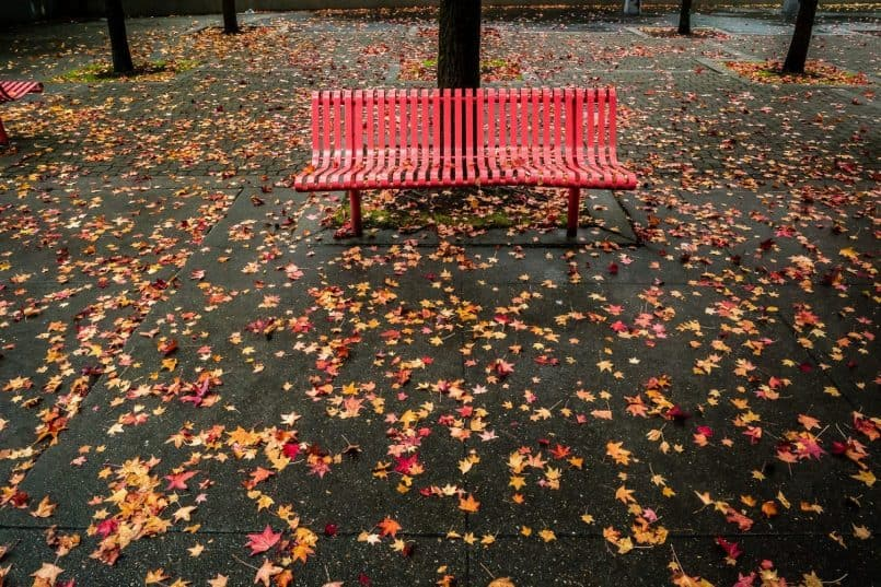 Red Bench by Ibarionex Perello