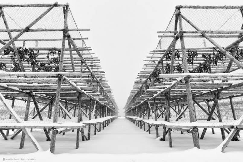 Fish Drying Racks in Snow