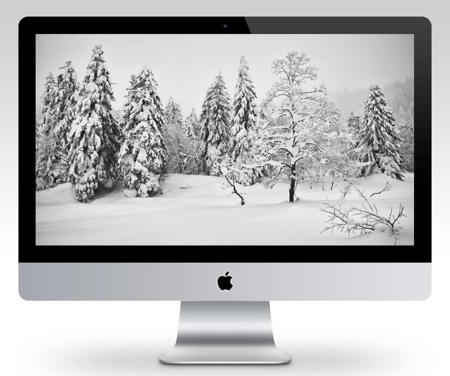 Mount Asahi Winter Wonderland Wallpaper Mockup